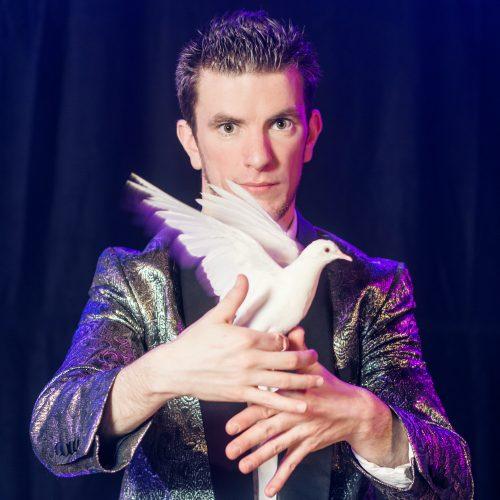 Tour de magie avec une colombe